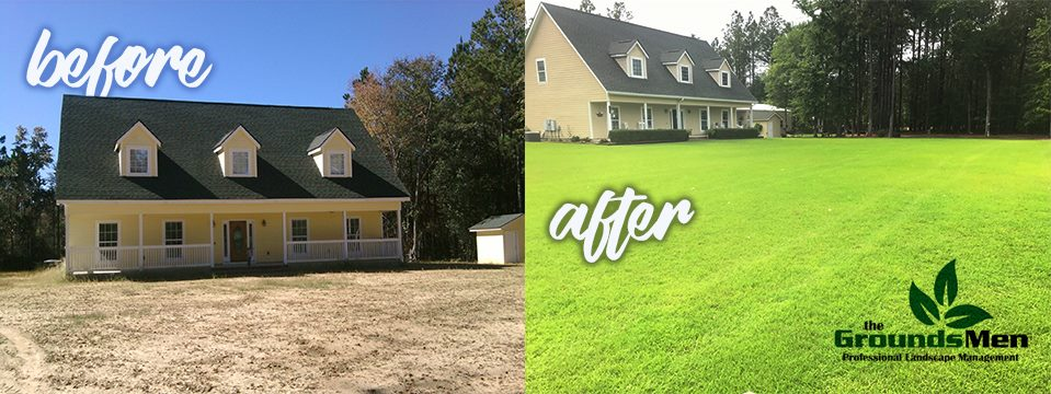 Before and After_Lawn Spray Program