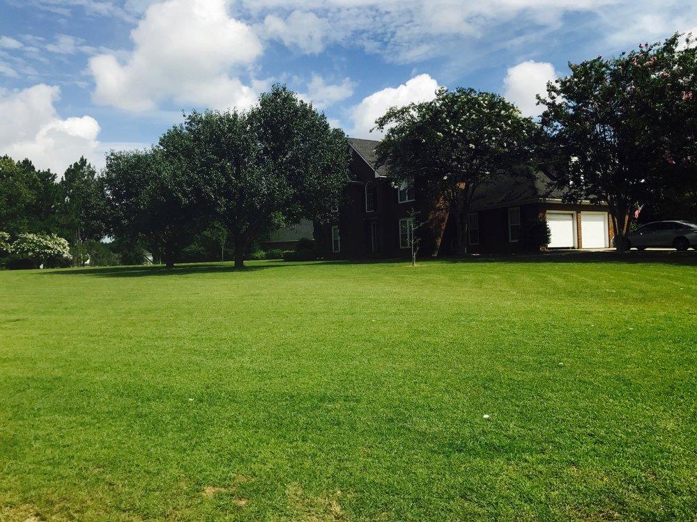 Lawn Spray Program | The GroundsMen