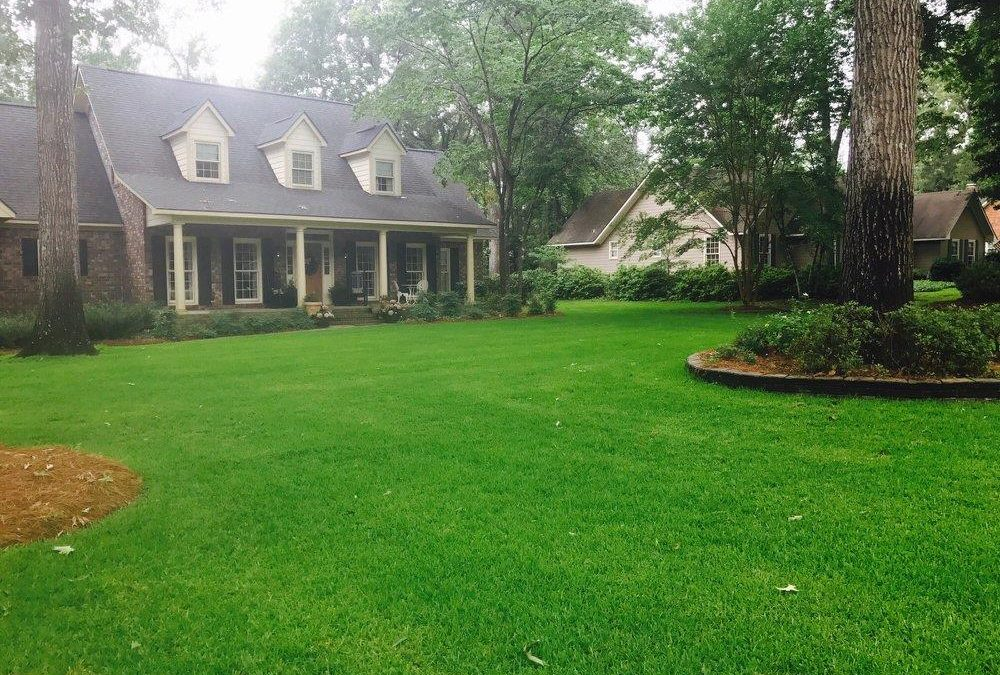 Lawn Spray Program